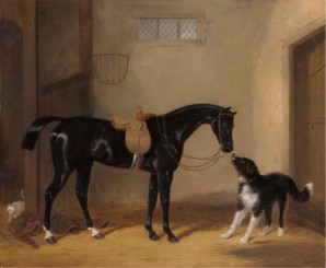 william-barraud-1837 newfoundland